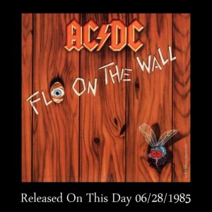ACDCFlyOnTheWall